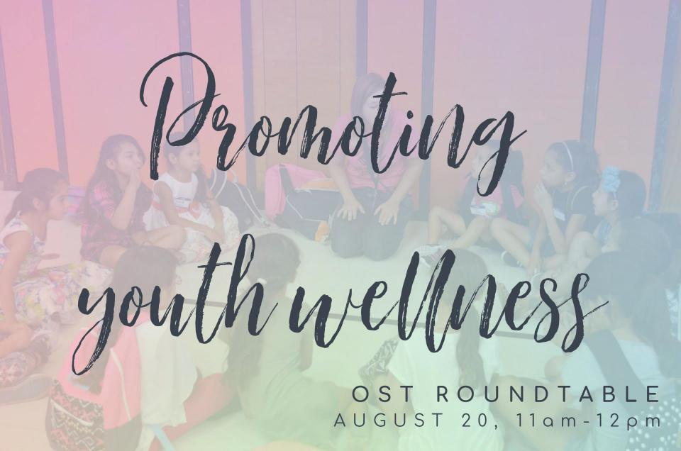 Promoting Youth Wellness, OST Roundtable