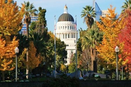 California Capitol Building during the Fall Season